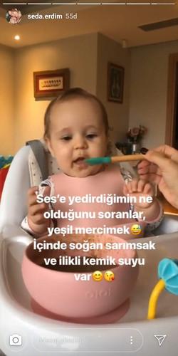 Seda Erdim