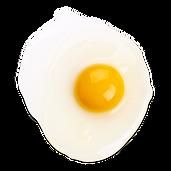 egg transparent two