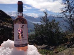 Notre vin rosé dans les pyrénées