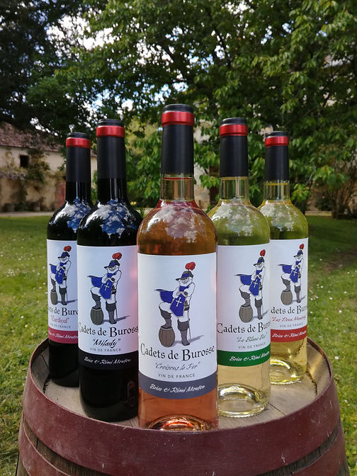 "Notre gamme de vins ""Cadets de Burosse"""