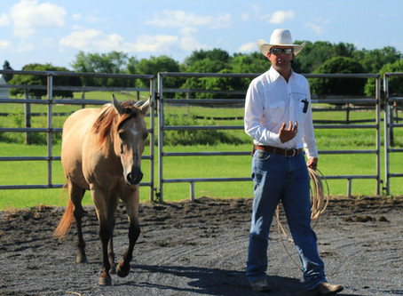 Learning to Yield: Day Two with Trevor Carter & The HSUS Forever Foundation