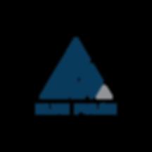Blue Pulse Logo Transparent.png