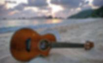 The radio of the enthusiasts of the ukulele /   la radio des passionnés du ukulélé