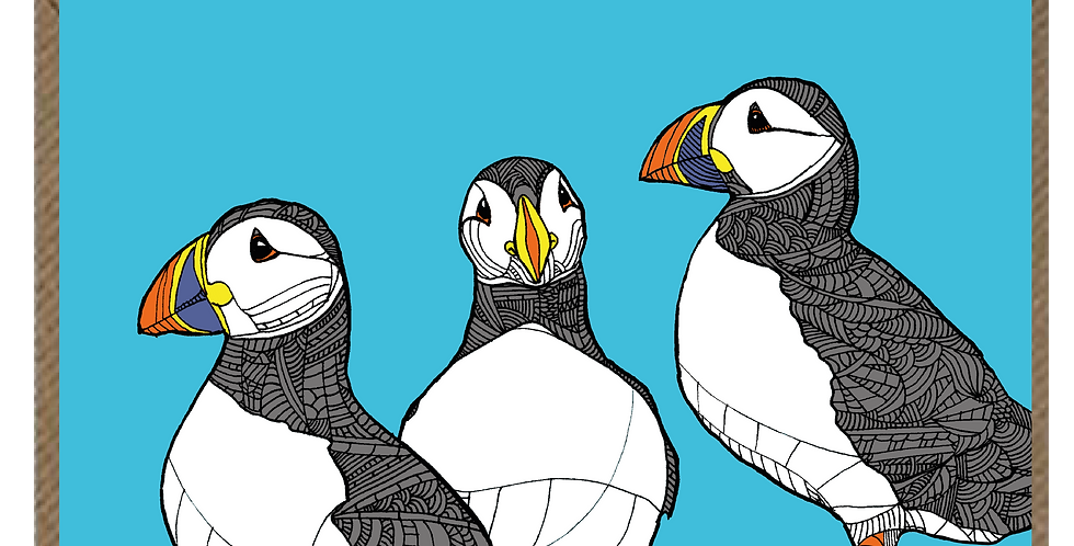 Puffins of Puffin Island - A6 Card