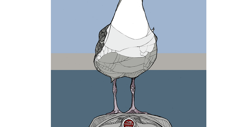 A4 Seaside Seagull - Signed and Numbered