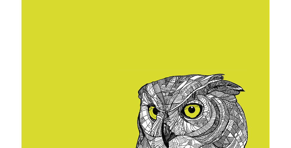 A3 Geometric Owl - Signed and Numbered