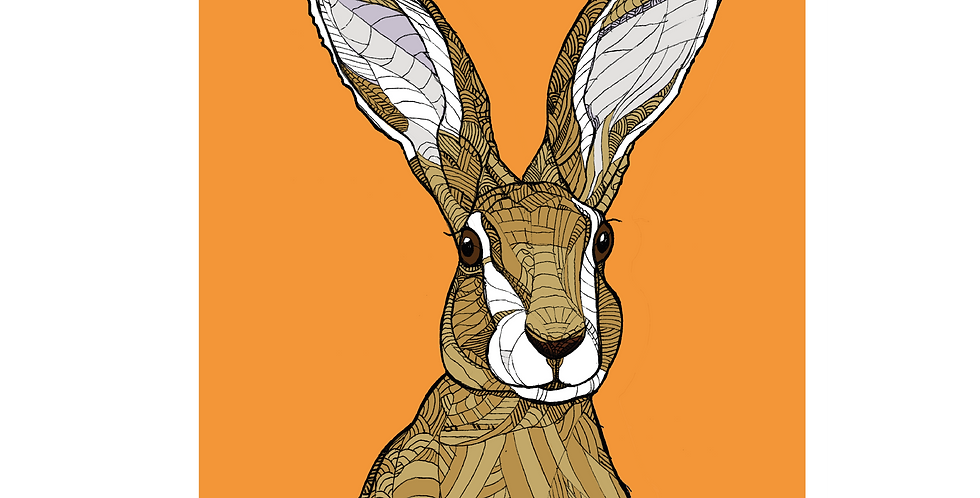 A4 Spare Hare - Signed and Numbered