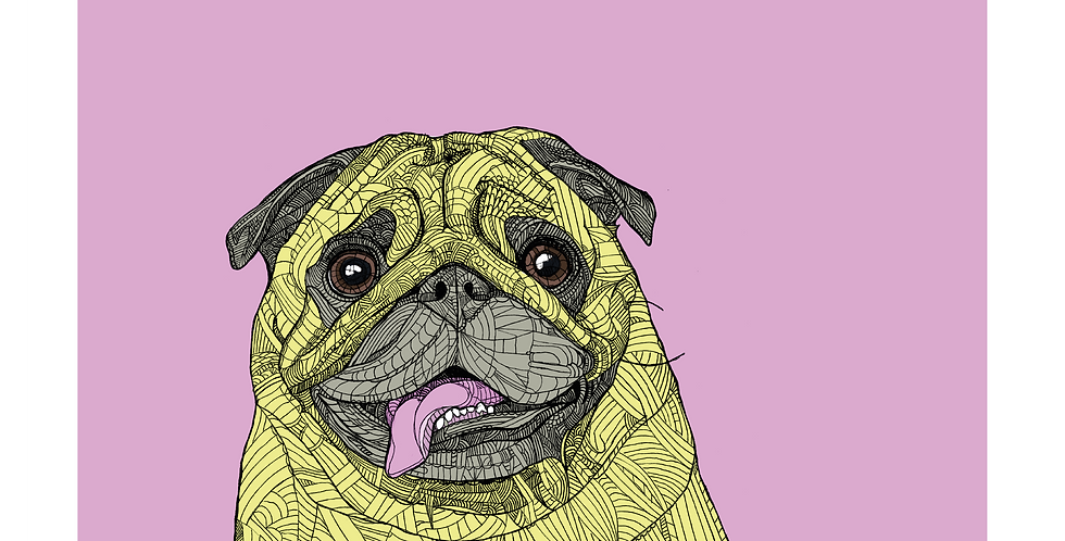 A3 Playful Pug - Signed and Numbered