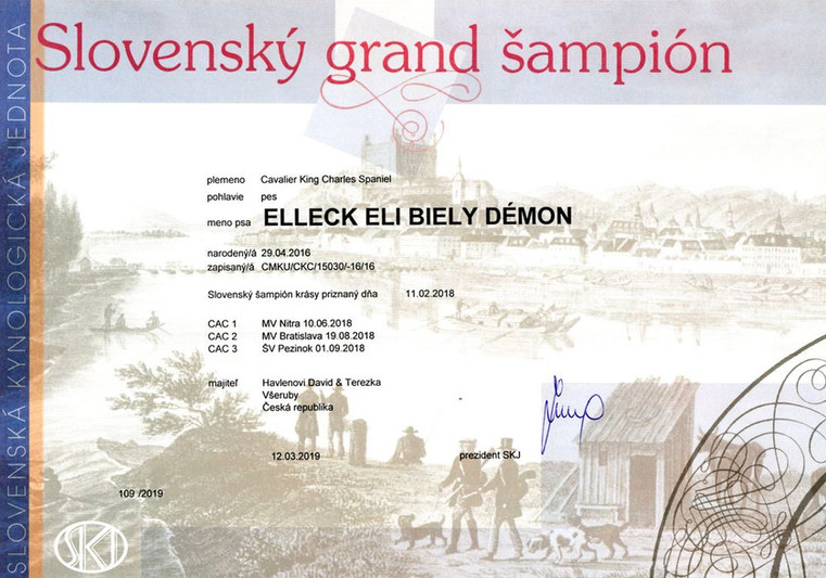 SK_grand_šampion.jpg