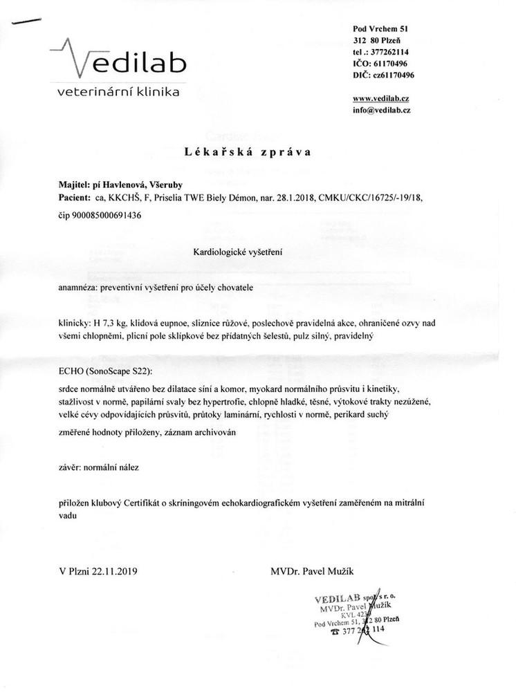 Priselia - kardio 2019_result.jpg