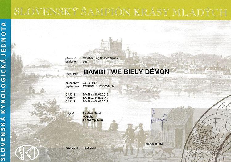 Bambi SK jr champion_result.jpg