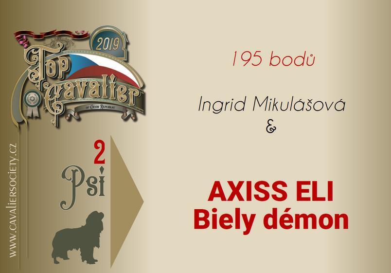 Axis_top_kavalír.png