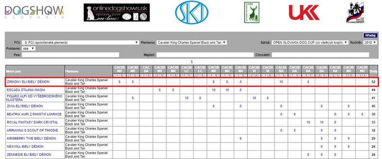 Zirkonek_výsledky_result.jpg