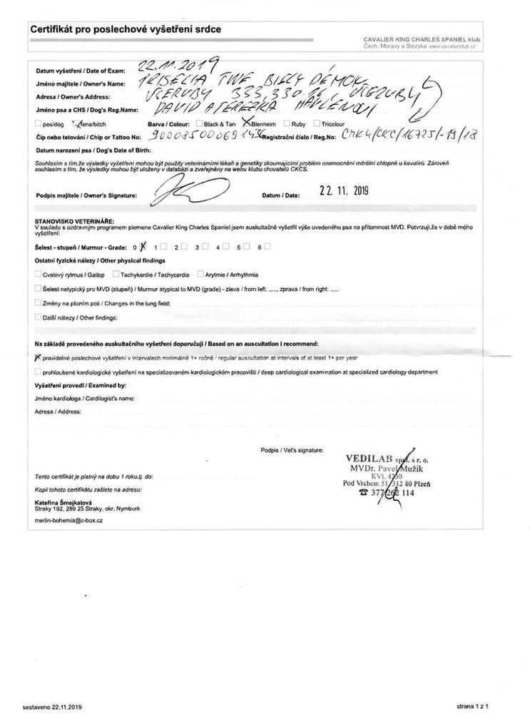 Priselia - srdce poslech 2019_result.jpg