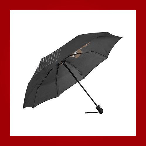 Blk Auto-Foldable Umbrella