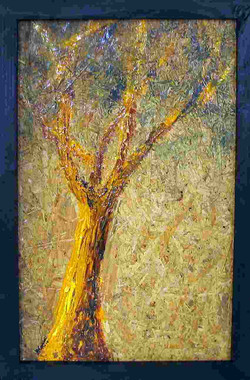 yellowoak