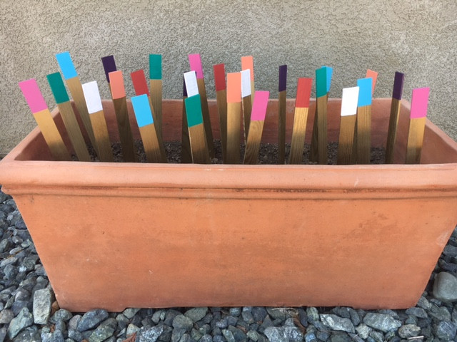 sticks are drying