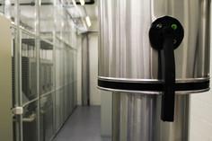 Das Kühlungskonzept entspricht dem heutigen Stand der Dinge und sorgt für effiziente und umweltschonende Kühlung.