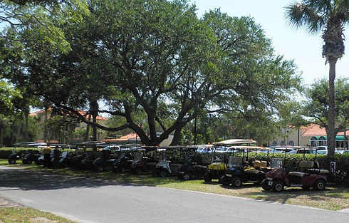 Sea Island Cart rental fleet