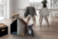 the house ambientada copy.jpg