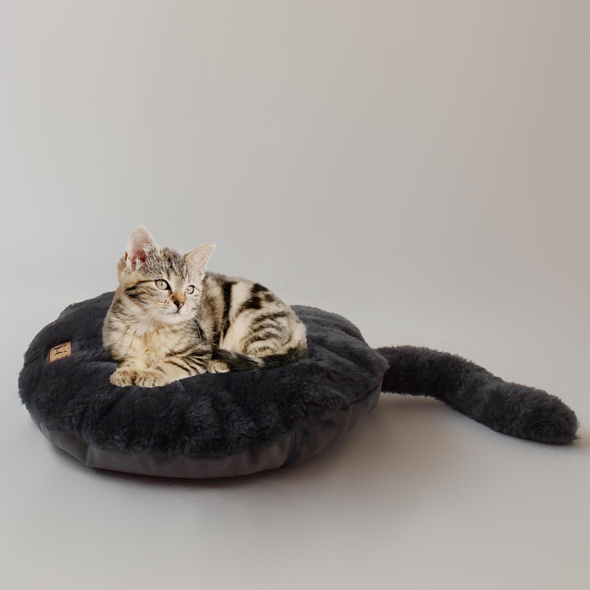 almofada kitty chumbo