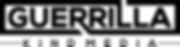 gk-fast-logo-wht.png