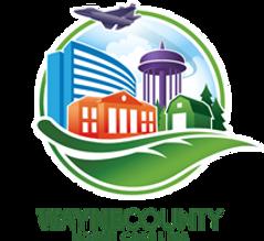 wayne county.png