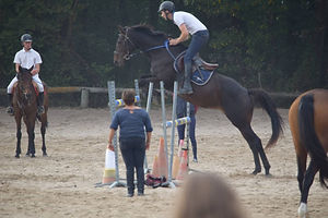 centre equestre treverno saut d'obstacle