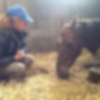 centre equestre treverno rozenn boutron