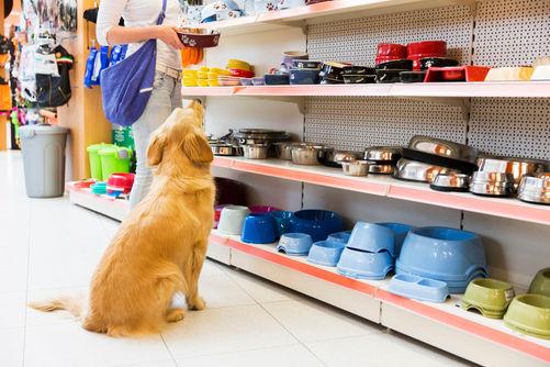 pet_store-509173668-5ad27f86c0647100380c