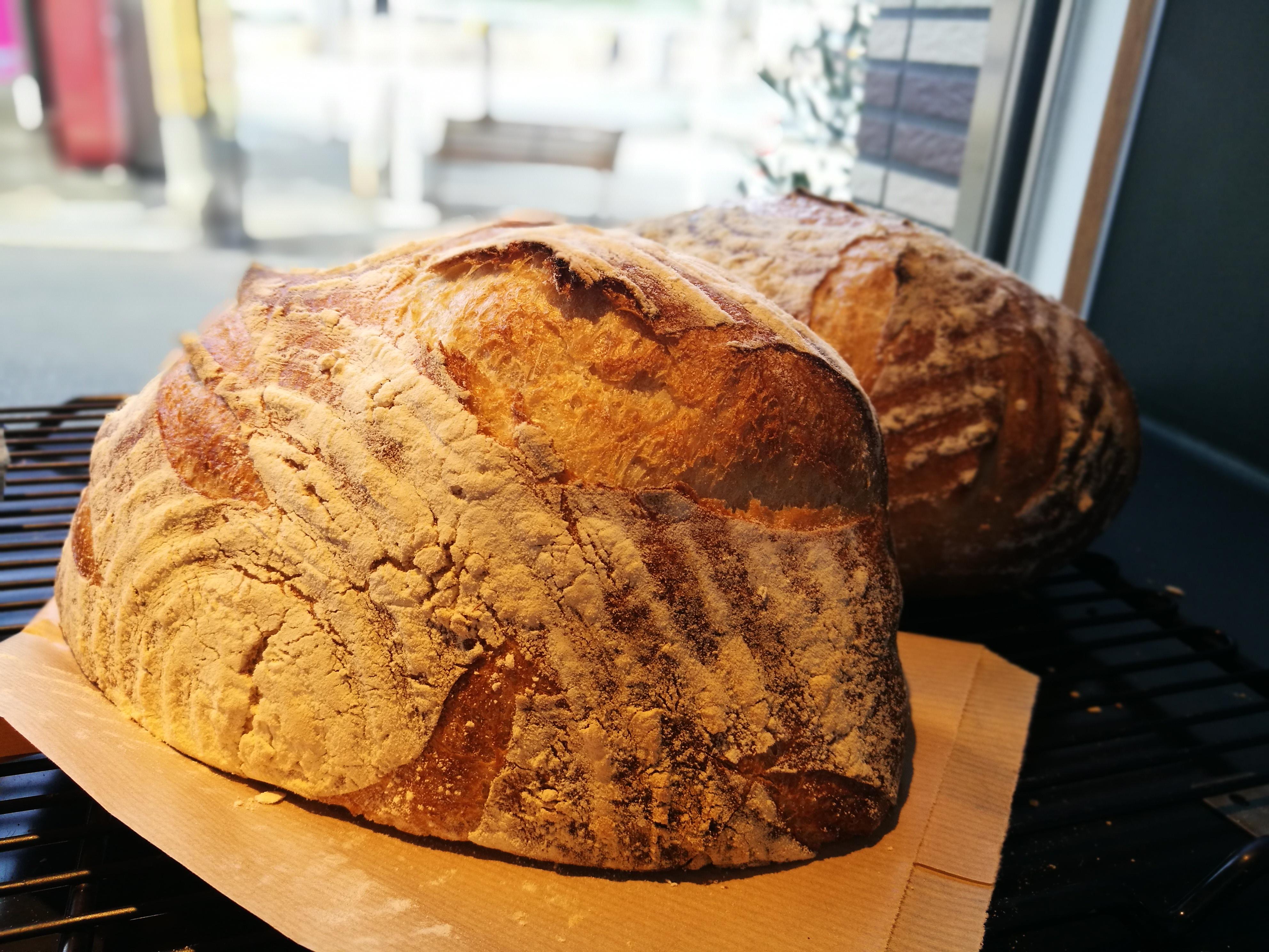 ハード系食パン