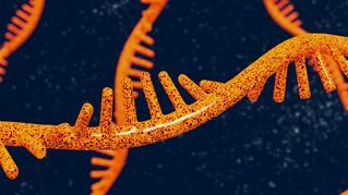 La ciencia detrás del desarrollo de la vacuna contra COVID-19