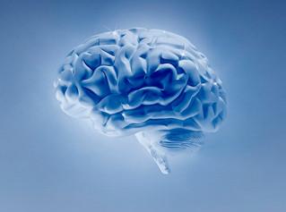 La neurorobótica, tecnología médica que ya es una realidad