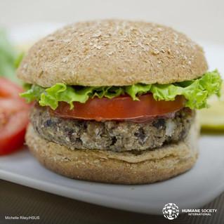 Prepara unas deliciosas y nutritivas hamburguesas de lentejas