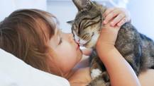 ¿Cómo debe de ser la relación entre niños y gatos?