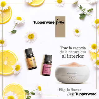 Tupperware® se expande para dar soluciones a todos tus espacios