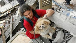 ¿Estás preparado para cuidar a tu mascota en caso de desastre?