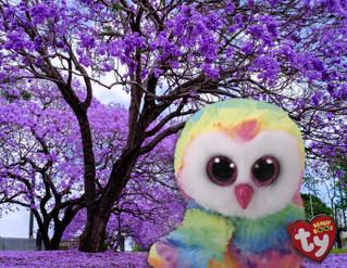 Owen: El personaje de la primavera que evoca energía y felicidad