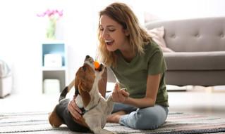¿Sabías qué las mascotas mejoran nuestro estado de ánimo?