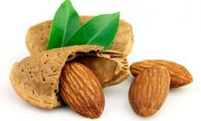 Conoce 5 increíbles propiedades de las almendras e inclúyelas en tu alimentación