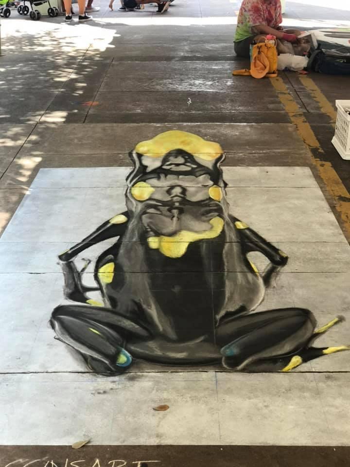 Chalk art frog