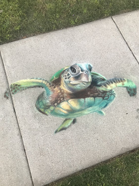 sae turtle.jpg