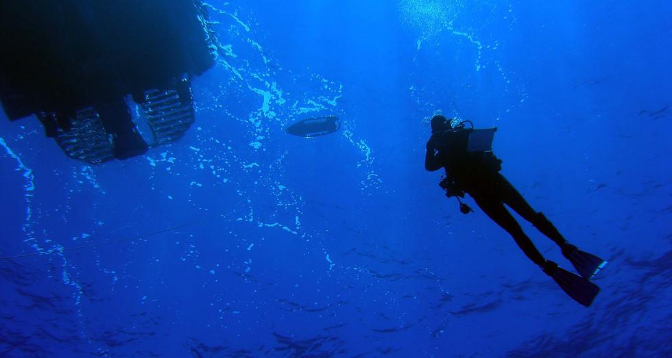 Scientific diver