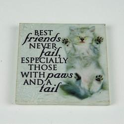 Kitten friends magnet