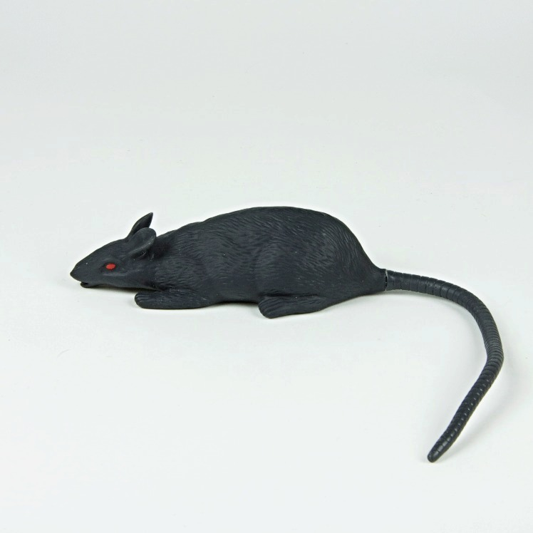 Red eyed rubber rat