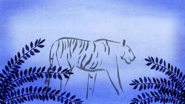 tigre.mov