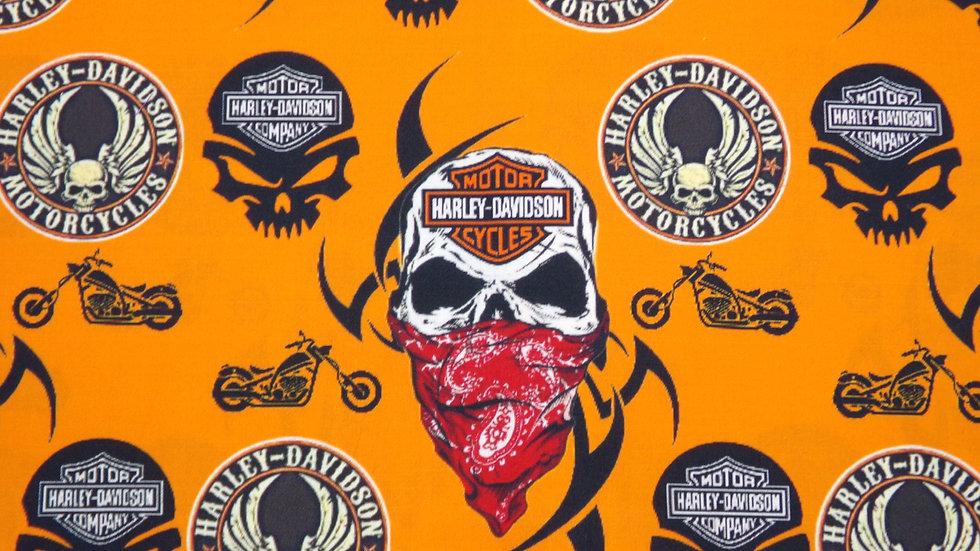 Skeleton Motorcycles