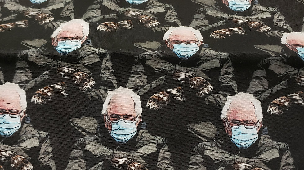 Bernie and his mittens Pleated Masks