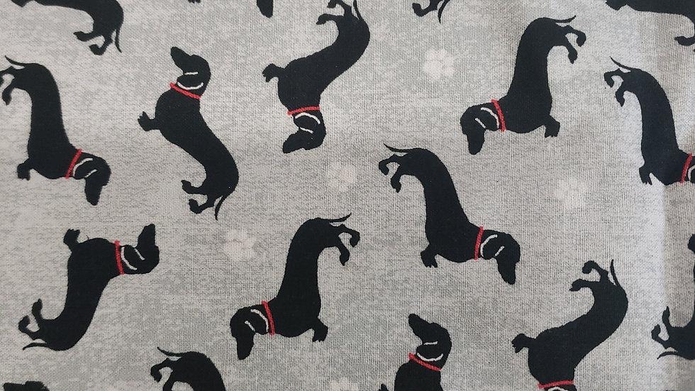 Black and grey dachshund
