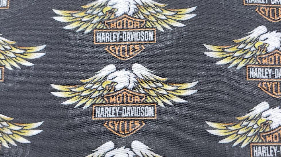 Eagle Harley